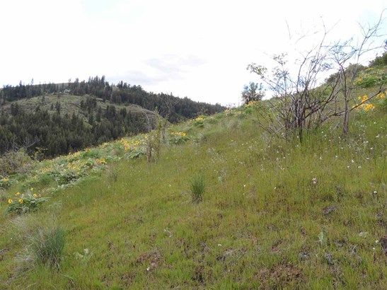 Tri Canyon Ranches Rd Tract 10, Creston, WA - USA (photo 2)