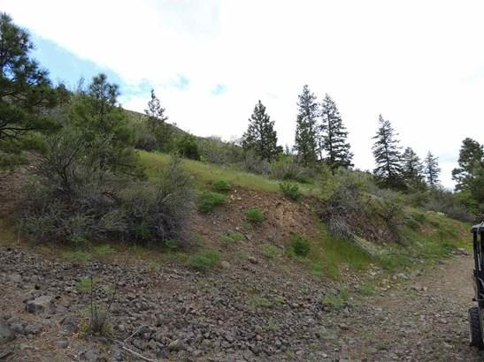 Tri Canyon Ranches Rd Tract 10, Creston, WA - USA (photo 3)