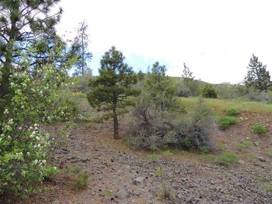 Tri Canyon Ranches Rd Tract 10, Creston, WA - USA (photo 4)