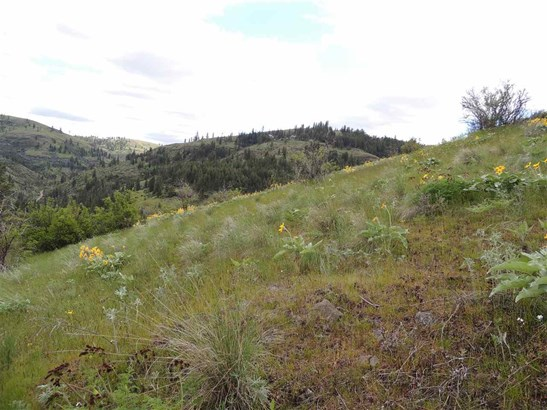Tri Canyon Ranches Rd Tract 10, Creston, WA - USA (photo 5)