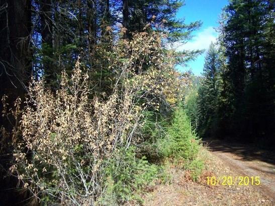 Nna Bird Creek Ln, Sagle, ID - USA (photo 3)