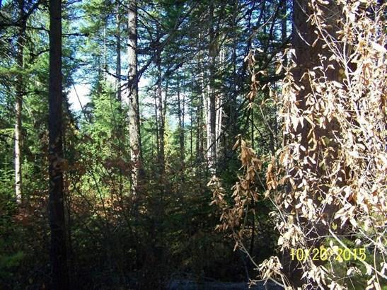 Nna Bird Creek Ln, Sagle, ID - USA (photo 4)