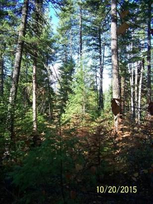 Nna Bird Creek Ln, Sagle, ID - USA (photo 5)