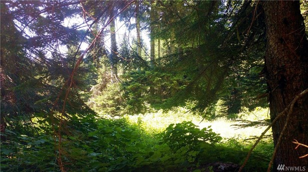 0 Huckleberry Peak Rd, Snoqualmie Pass, WA - USA (photo 1)