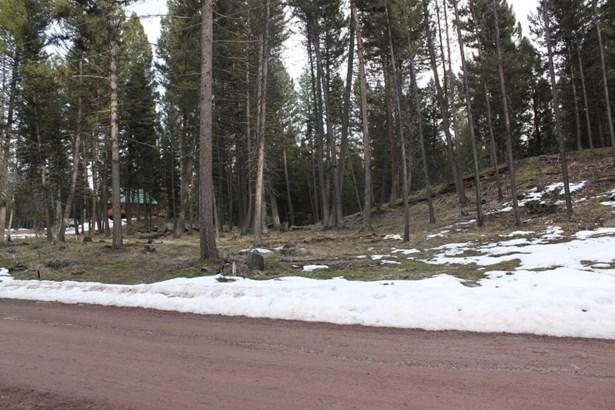 175 Moose Lane, Seeley Lake, MT - USA (photo 3)