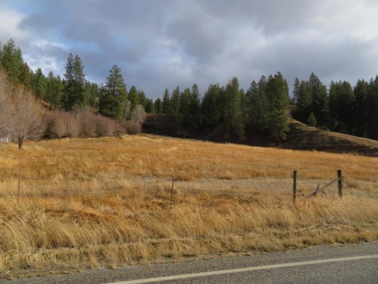 Tbd Hwy 21, Curlew, WA - USA (photo 4)