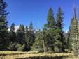 Tbd Bridger Canyon Drive, Bozeman, MT - USA (photo 1)