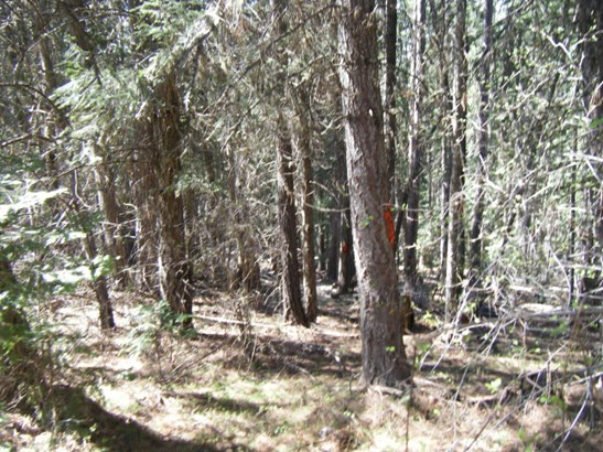 Nka E. Fork Pine Creek, Pinehurst, ID - USA (photo 3)