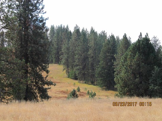 1026 Slide Creek Rd, Colville, WA - USA (photo 5)