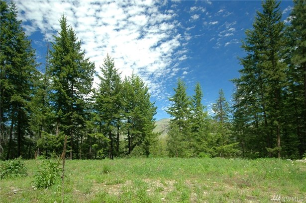 401 Wolf Creek Rd, Winthrop, WA - USA (photo 1)