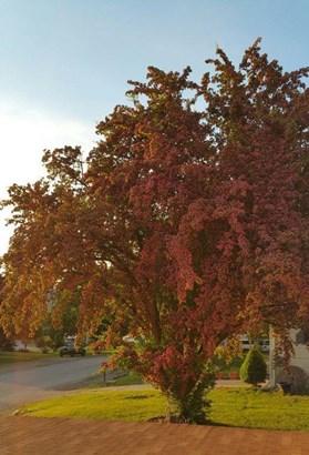 893 S Jefferson St, Colville, WA - USA (photo 3)