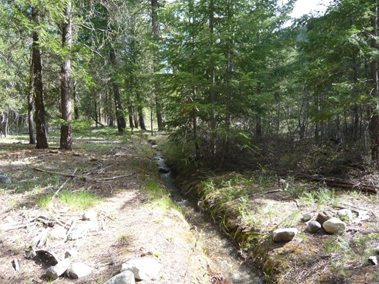 33 E Buttermilk Creek Rd, Twisp, WA - USA (photo 2)