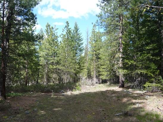 33 E Buttermilk Creek Rd, Twisp, WA - USA (photo 3)
