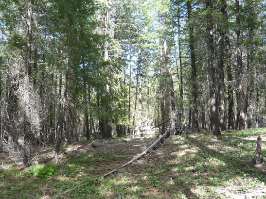 33 E Buttermilk Creek Rd, Twisp, WA - USA (photo 5)