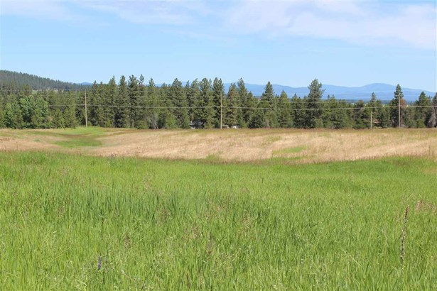 000 W Woolard Rd, Colbert, WA - USA (photo 4)