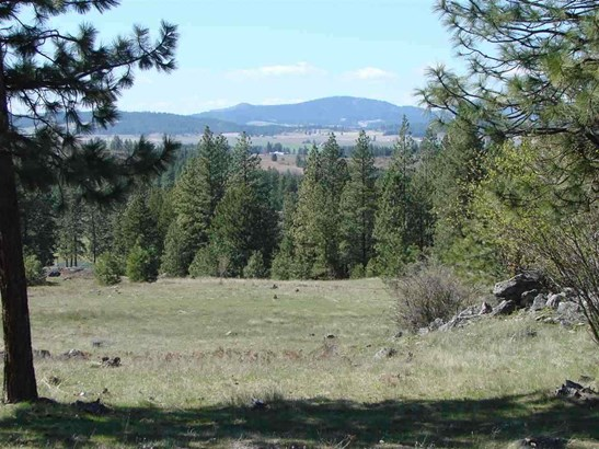 22221 N Pease Hill Rd, Colbert, WA - USA (photo 1)