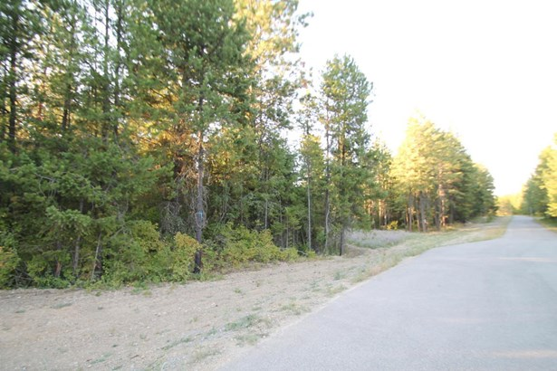 Lot 4 Seneacquoteen Dr, Sagle, ID - USA (photo 1)