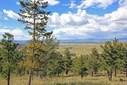 38 Meadowgrass, Montana City, MT - USA (photo 1)