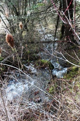 21249 E Killarney Lake Rd, Cataldo, ID - USA (photo 5)