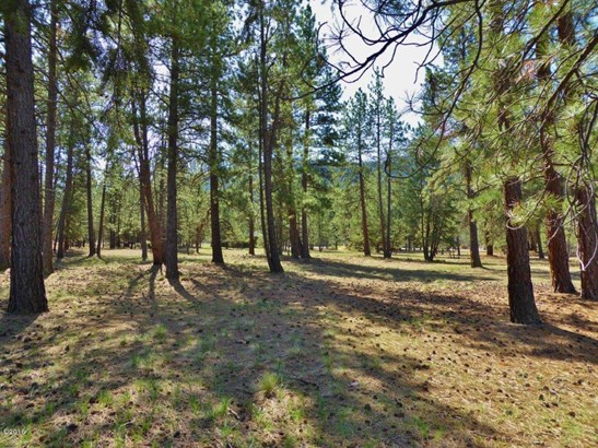Lot 47 Turah Meadows, Clinton, MT - USA (photo 1)