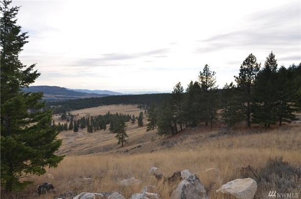0 Summit Ridge Rd, Tonasket, WA - USA (photo 1)