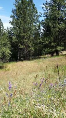 450 Dora Lane, Missoula, MT - USA (photo 4)