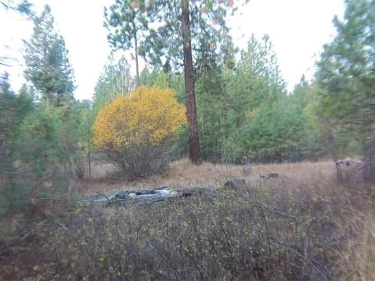 Xxx Tarbert Rd, Deer Park, WA - USA (photo 2)