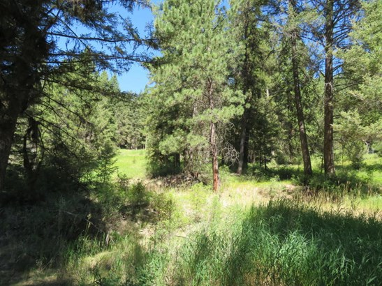565 Toroda Creek Rd, Wauconda, WA - USA (photo 2)