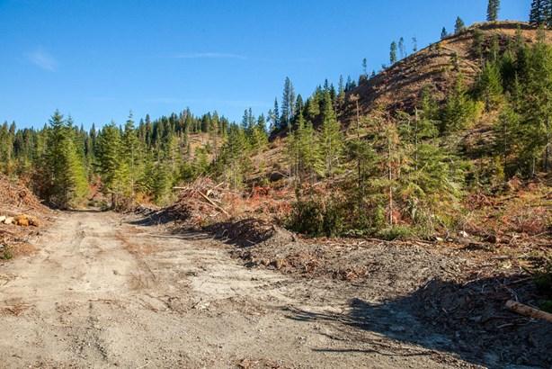 Nna Dry Creek Road, Leavenworth, WA - USA (photo 5)
