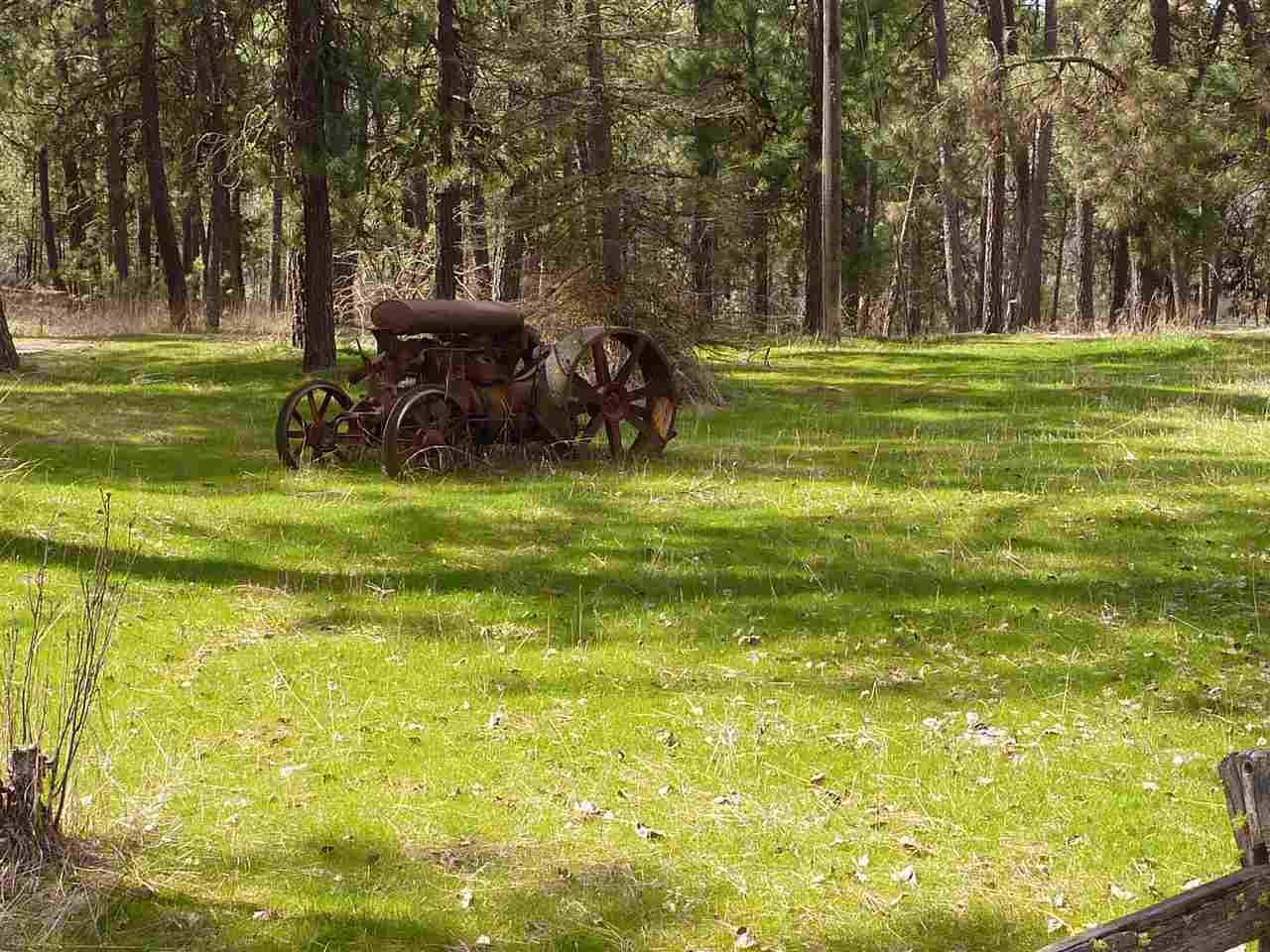 12525 S Spotted Rd, Cheney, WA - USA (photo 2)