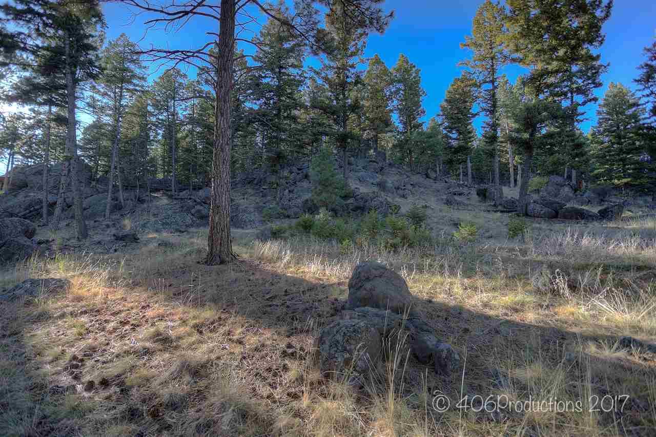 18 Eagleview Dr, Montana City, MT - USA (photo 3)