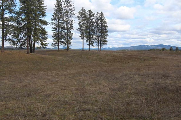 41xxx N Hardesty Rd, Elk, WA - USA (photo 4)