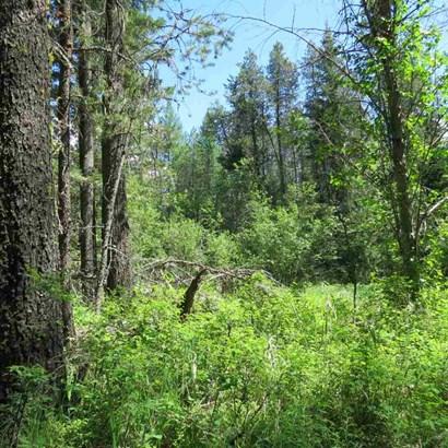 15024 E Oregon Rd, Elk, WA - USA (photo 4)