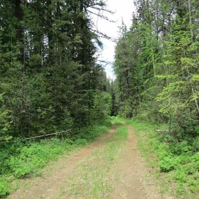 15024 E Oregon Rd, Elk, WA - USA (photo 5)