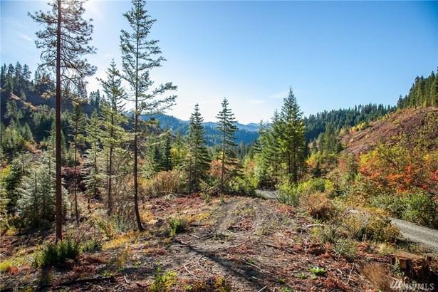 0 Dry Creek Rd, Leavenworth, WA - USA (photo 3)