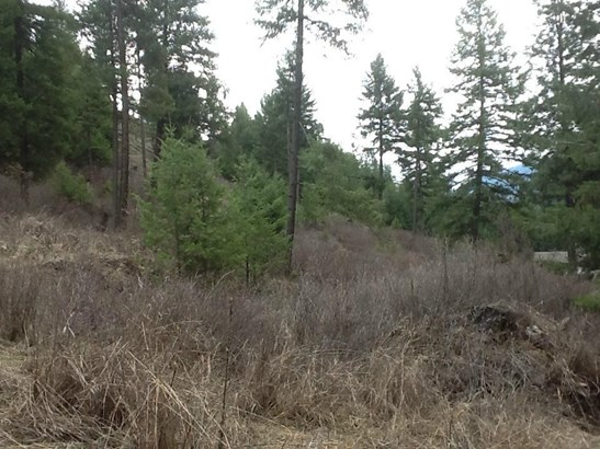 2228 X Marble Valley Basin, Addy, WA - USA (photo 4)