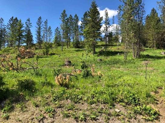 1531 Kirkpatrick Rd, Elk, WA - USA (photo 2)