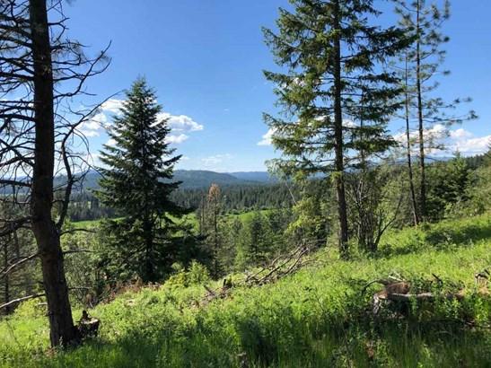 1531 Kirkpatrick Rd, Elk, WA - USA (photo 4)