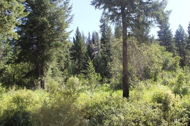 1951 Silver Creek, Keller, WA - USA (photo 2)
