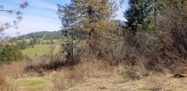 Tbd Bissell Rd, Hunters, WA - USA (photo 2)