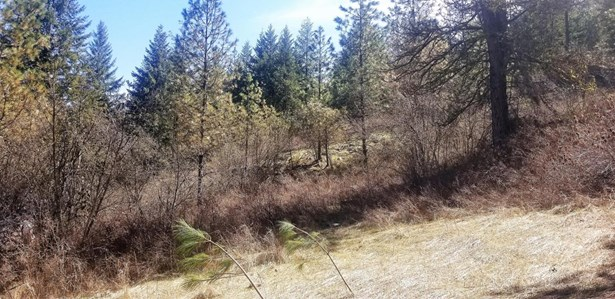 Tbd Bissell Rd, Hunters, WA - USA (photo 3)