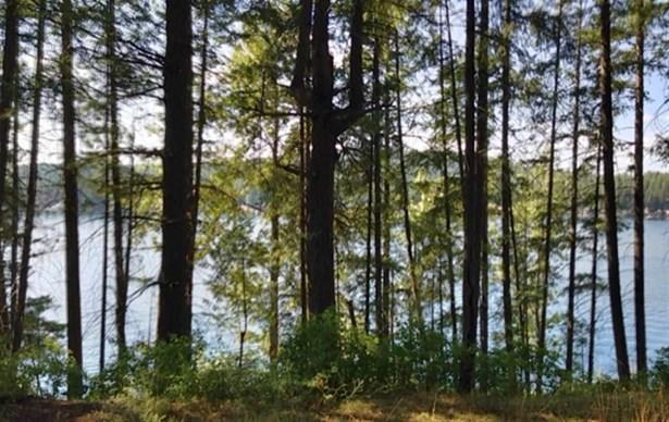 995 Southshore Diamond Lake Rd, Newport, WA - USA (photo 4)