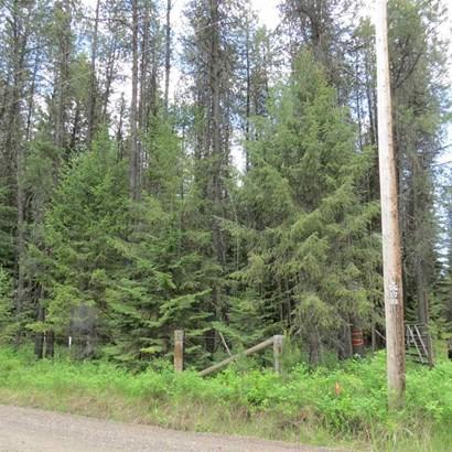 15102 E Oregon Rd, Elk, WA - USA (photo 4)