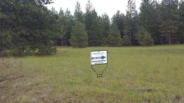 0 Oregon Rd, Elk, WA - USA (photo 3)