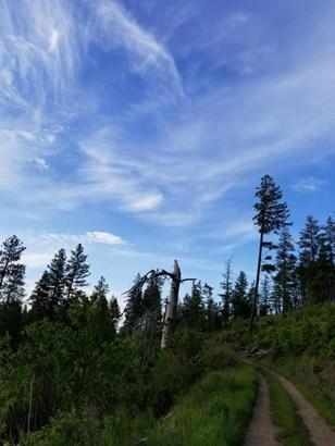 Nna Initial Peak Rd, Cataldo, ID - USA (photo 5)