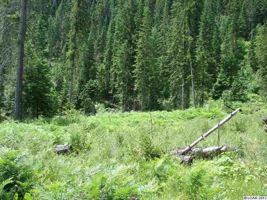 Tbd Lot 13c Indian Creek Rd, Orofino, ID - USA (photo 1)
