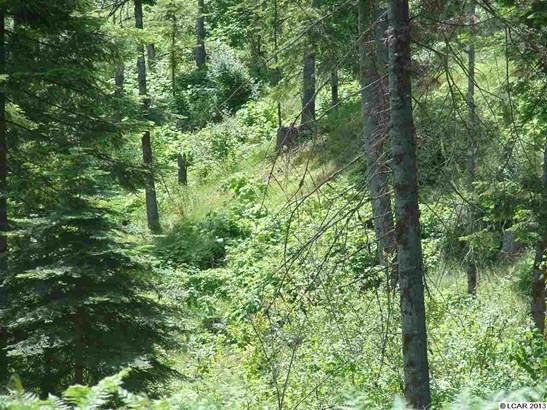 Tbd Lot 13c Indian Creek Rd, Orofino, ID - USA (photo 2)