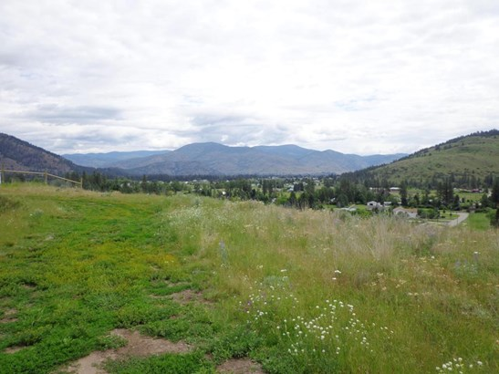 Lot 4 Hwy 21, Danville, WA - USA (photo 1)