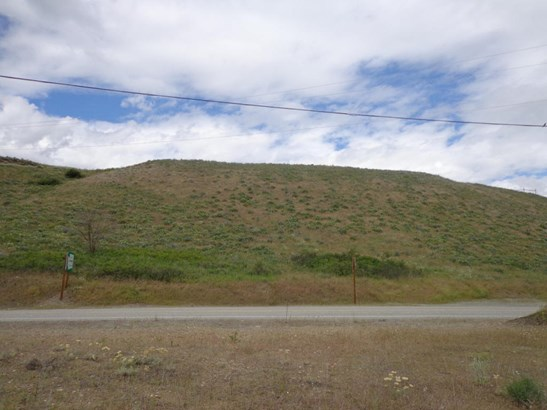 Lot 4 Hwy 21, Danville, WA - USA (photo 3)