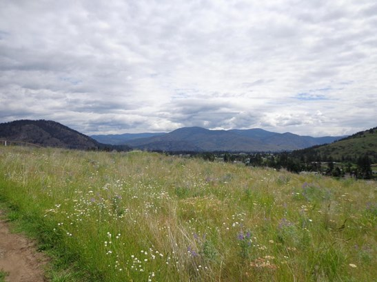 Lot 4 Hwy 21, Danville, WA - USA (photo 4)